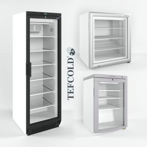 3d модель холодильных и морозильных шкафов Tefcold