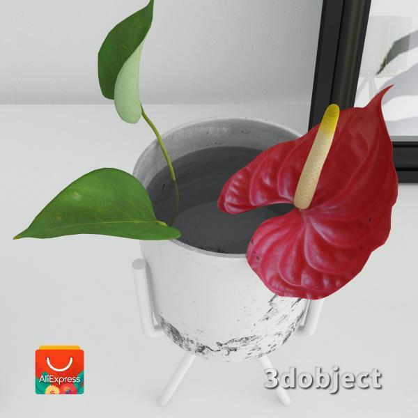 3d модель вазы с aliexpress и цветка антуриум_3