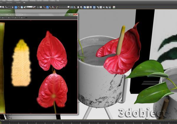 текстурирование цветка в 3d max