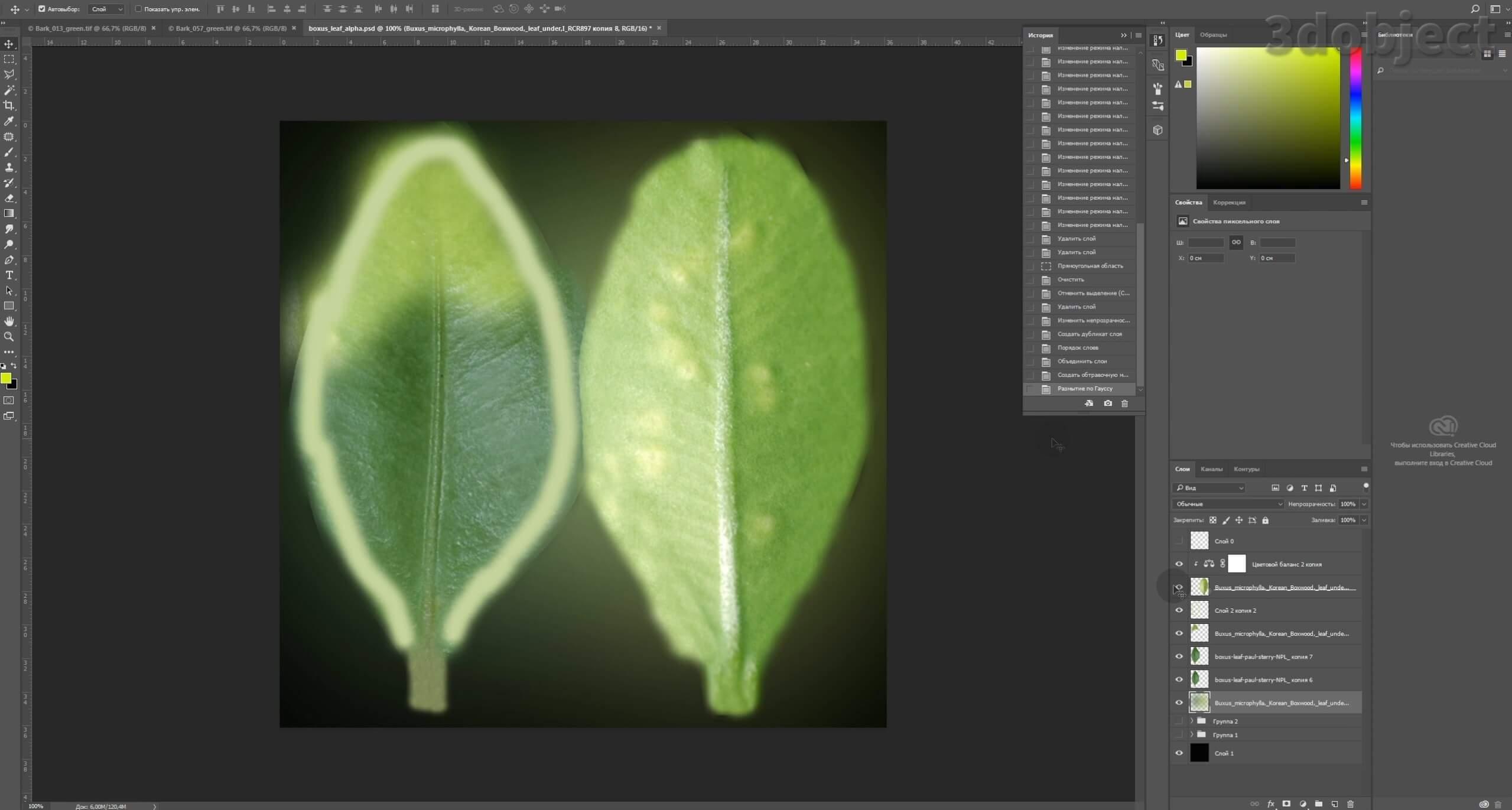 Моделирование Самшит плагином MultiScatter в 3d max. Текстурирование в photoshop. VRay2SidedMtl_10