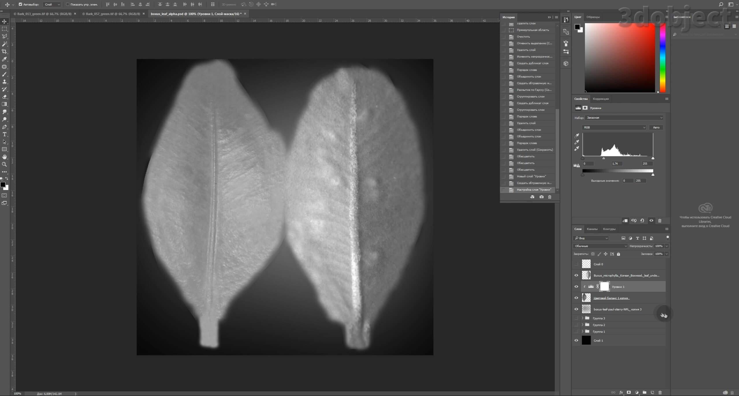 Моделирование Самшит плагином MultiScatter в 3d max. Текстурирование в photoshop. VRay2SidedMtl_11