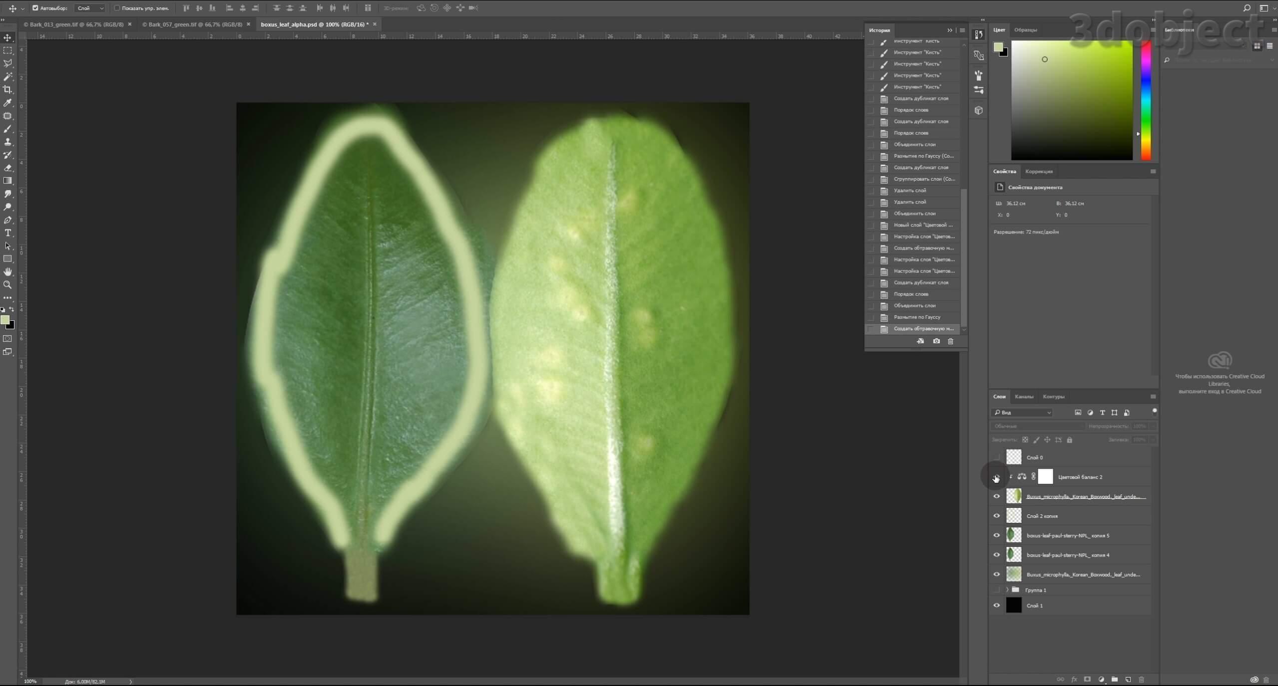 Моделирование Самшит плагином MultiScatter в 3d max. Текстурирование в photoshop. VRay2SidedMtl_9