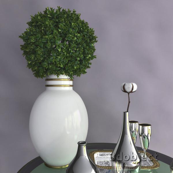 3d модель вазы с aliexpress и растений, Самшит и Хлопчатника_2
