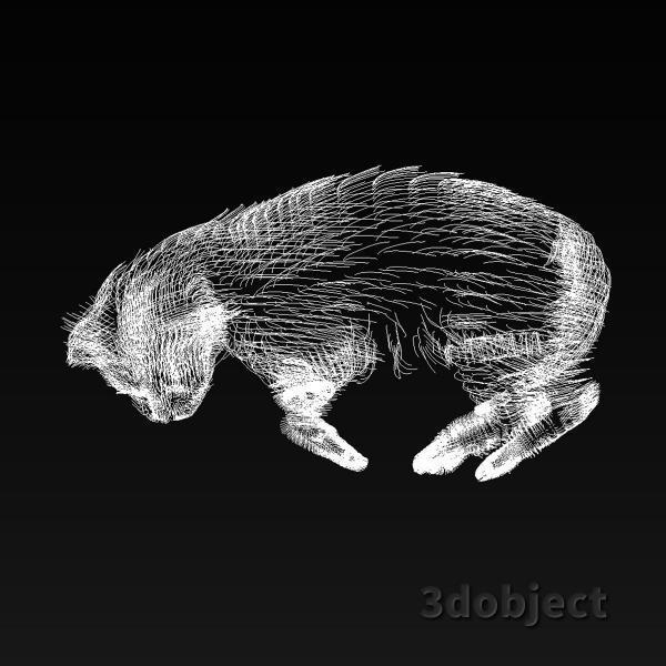 3d модель кота Винсента с хурмой_5