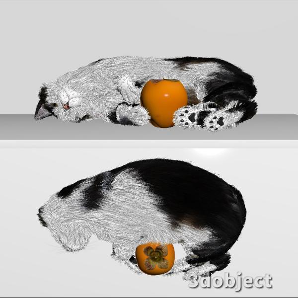 3d модель кота Винсента с хурмой_4