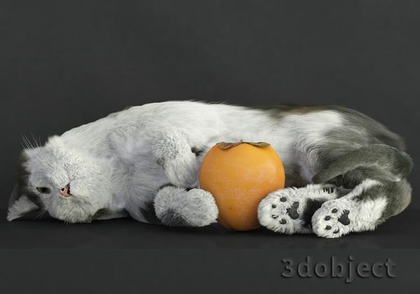 Модификатор Hair and Fur (vray), настройки модуля на примере создания кота